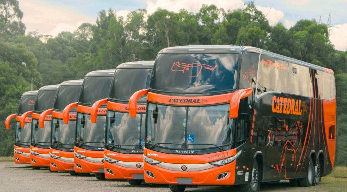 Ônibus da Marcopolo alinhados em frente a árvores